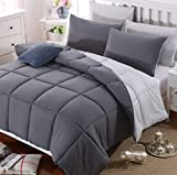 AYSW Duvet King Comforter Warm and Anti Allergy All Season Dark Grey and Light Grey NO Pillowcases...