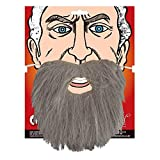 Wicked Costumes Adult Beard Fancy Dress Party Costume Accessory Grey Facial Hair Pirate Wizard