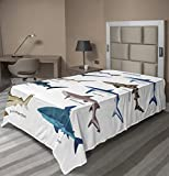 Ambesonne Shark Flat Sheet, Types of Sharks Pattern Whaler Piked Dogfish Whlae Shark Maritime Design...