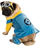 Rubie's 887800S Official Pet Dog Minion Costume, Small