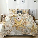 YOLIKA Duvet Cover Set Assorted Seashells in Sandy Beach Summer Vacation Nautical Theme Coastal...