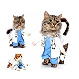 DELIFUR Dog Cat Doctor Costume Pet Doctor Clothing Halloween Jeans Outfit Apparel (XS, Doctor)