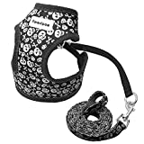 Forestpaw Pirate Skull Pattern Small Dog Vest Harness Leash Set - Cute Pet Harness for Walking Cats...