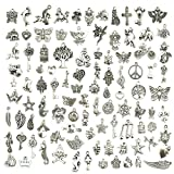 necklace Wholesale Bulk Lots Jewelry Making Silver Charms Mixed Smooth Tibetan Silver Metal Charms...
