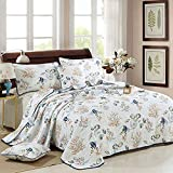 AIFCX Quilted Bedspread Seashells Beach Themed Bed Quilt Set Nautical Bedding King Comforter Set...
