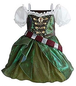 Disney Pirate Fairy Costume