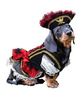 Female Dog Pirate Costume