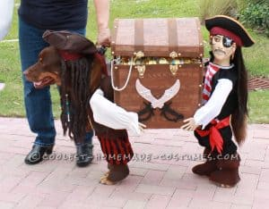 Large Dog Pirate Costume