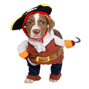Pirate Costume For Small Dog
