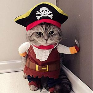 Pirate Kitty Costume