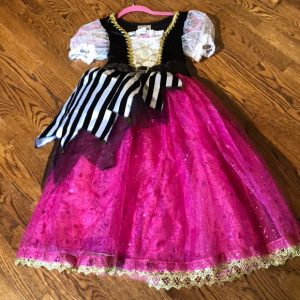 Pirate Princess Costume Disney