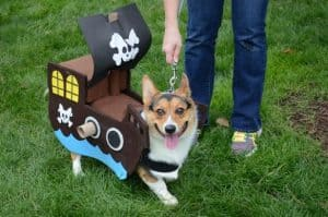 Pirate Ship Dog Costume