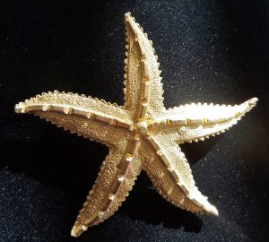 nautical star brooch
